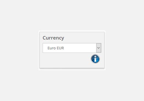 Exchange Rate Conversion Selector